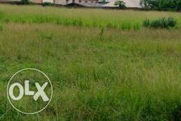 Well Located 100 by 300 Land for Sale Along the Road at Arougba Gra,