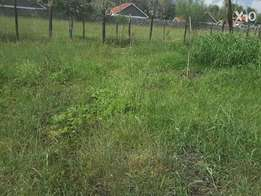 Lovely one eighth (1/8) of an acre land plots in Ongata Rongai