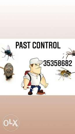 Dream past control cleaning service