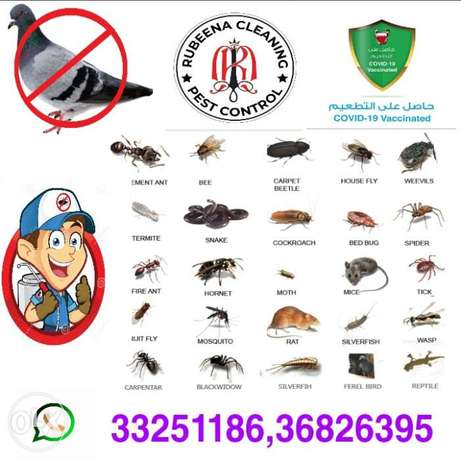 Rubeena cleaning pest control