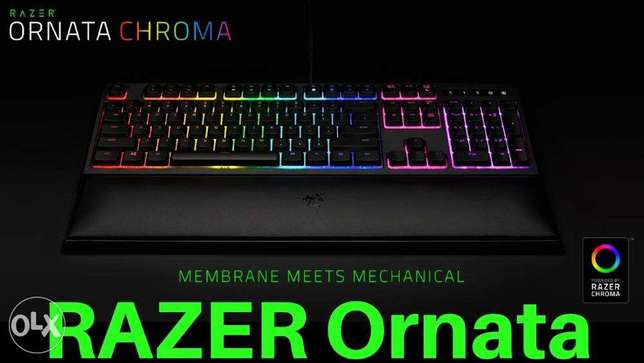 Gaming Keyboard - Ornata chroma