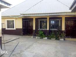 Tastefully finished apartments for rent