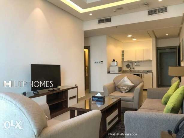 spacious fully furnished one Bedroom Apartment in Shaab