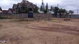 A residential plot 50*100 in a developed are with a clean title