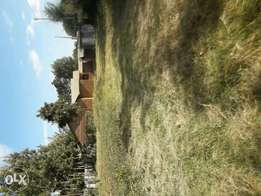 1/4 + 1/8 piece of land with a 4 bedroom house near Kimumu secondary