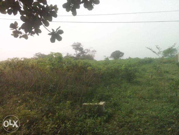 Govt ACQFree Land at Ewekoro No Omoonile With Family Receipt-Pay Twise Ewekoro - image 1