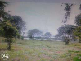 50 acres of land at lake site