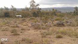 1/8th Land for Sale at Longonot