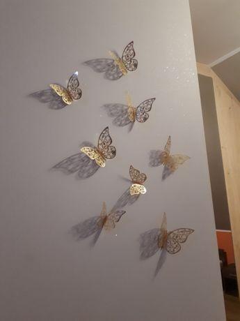 Naklejki Motyle 3d Na ścianę Lustro Barlinek Olxpl