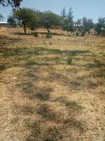 A(40*70) Land for sale
