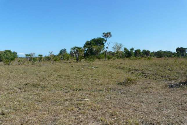 Good,well documented and Affordable Property for sale Diani Beach - image 4