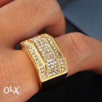 Gold Stainless Steel Ice Flooded Semi Oct Shape Ring MR-062