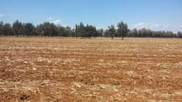 1 acre in Timau touching tarmac at 3.5m