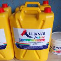Alliance paint for the high quality paint both interior and exterior
