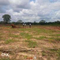 looking for a land to buy,Gazetted,sandy and dry land, don't miss