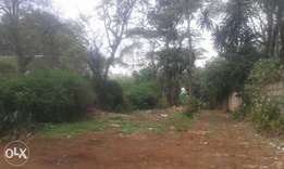 Lavington riara Rd 1.4ac gently sloping land