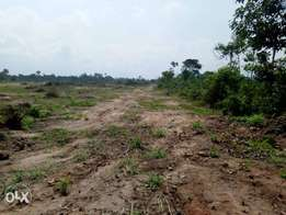 Acres of land for sales.