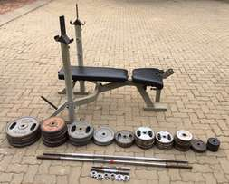 244.5 Kg of weights for sale