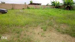 Buy now in ROYALTY GARDEN SHIMAWA in a very good location