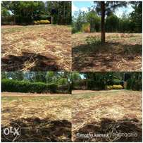 2 plots 40*80 for sale at Kenol within a quiet,serene and prime neigh
