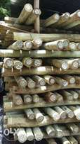 Treated fencing poles/pole