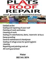 Repair your leaking roof now