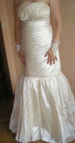 35674bc97db73b Продам плаття/платье кольору шампань 44-46 р. з фатою і рукавичками Львів