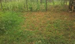 Kiamokama Kisii 4 acres plot