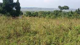 80 by 100 land along entebbe road