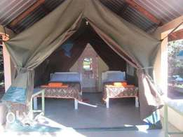 3 Days 2 Nights mara safari package