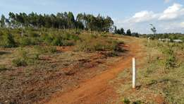 50x 100 at kamangu 700meters from Tarmac and shopping centre.
