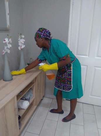 Pest Services and Cleaning Johannesburg - image 4