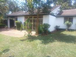 4 bedrooms bungalow to let in loresho.