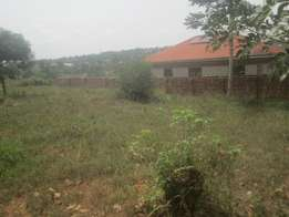 Developed 50 by 100ft plot in Sonde-Bukerere at 10m