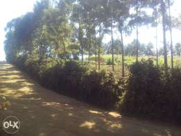 gathanji 2 acres 4.3m 4 km from the tarmac