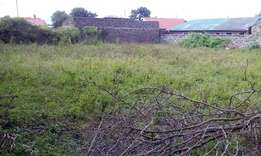 Quarter acre plot for sale in Ngata