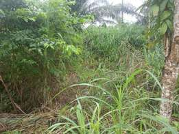 550Sqm of land for sale in Awka
