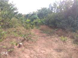 58 plots of land for sale along Owerri-PH Road