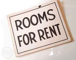 Rooms to rent (available immediately)
