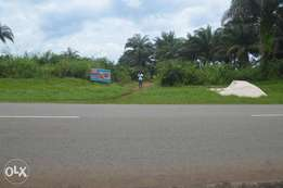 Cheap and Affordable Land for Sale