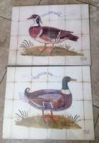 Attractive Duck Prints / Pictures