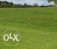 2 plots of land for sale at wasinmi ewekoro suitable for hostel e.t.c