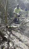 Knowle Tree Services- Plots clearing & Stumps removal