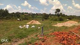 Kyanja, 70ft by 100ft Plot with clean Land Title