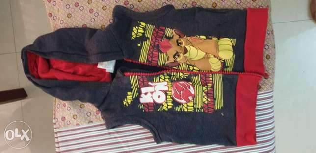 Hoodie Jacket for Boys Lion King (Ages upto 3 years)