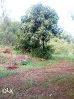 Surely we mind about your welfare matuu plots deposit 40k only.