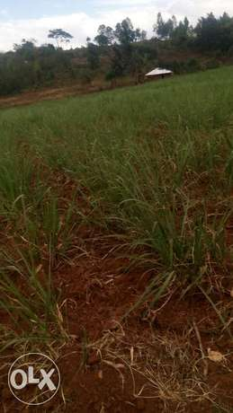 15acre land on sale in Pala,kabuoch,20km off Rongo town.160K per acre Kamenya - image 8