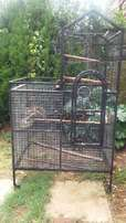 Parrot Cage - Good Condition