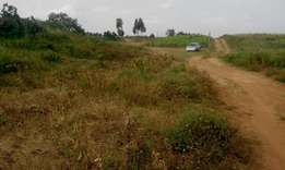 Quater acre land for sale at Kamangu, 700 meters from Tarmac