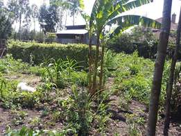 Quick sale Prime quarter acre for sale at Ololua Matasia